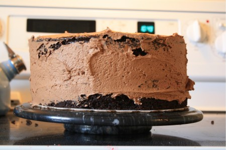 Crumbshield of Chocolate Buttercream on Chocolate Cake