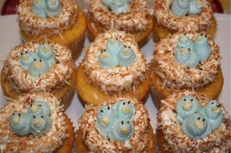 Bluebird Cupcakes for Spring
