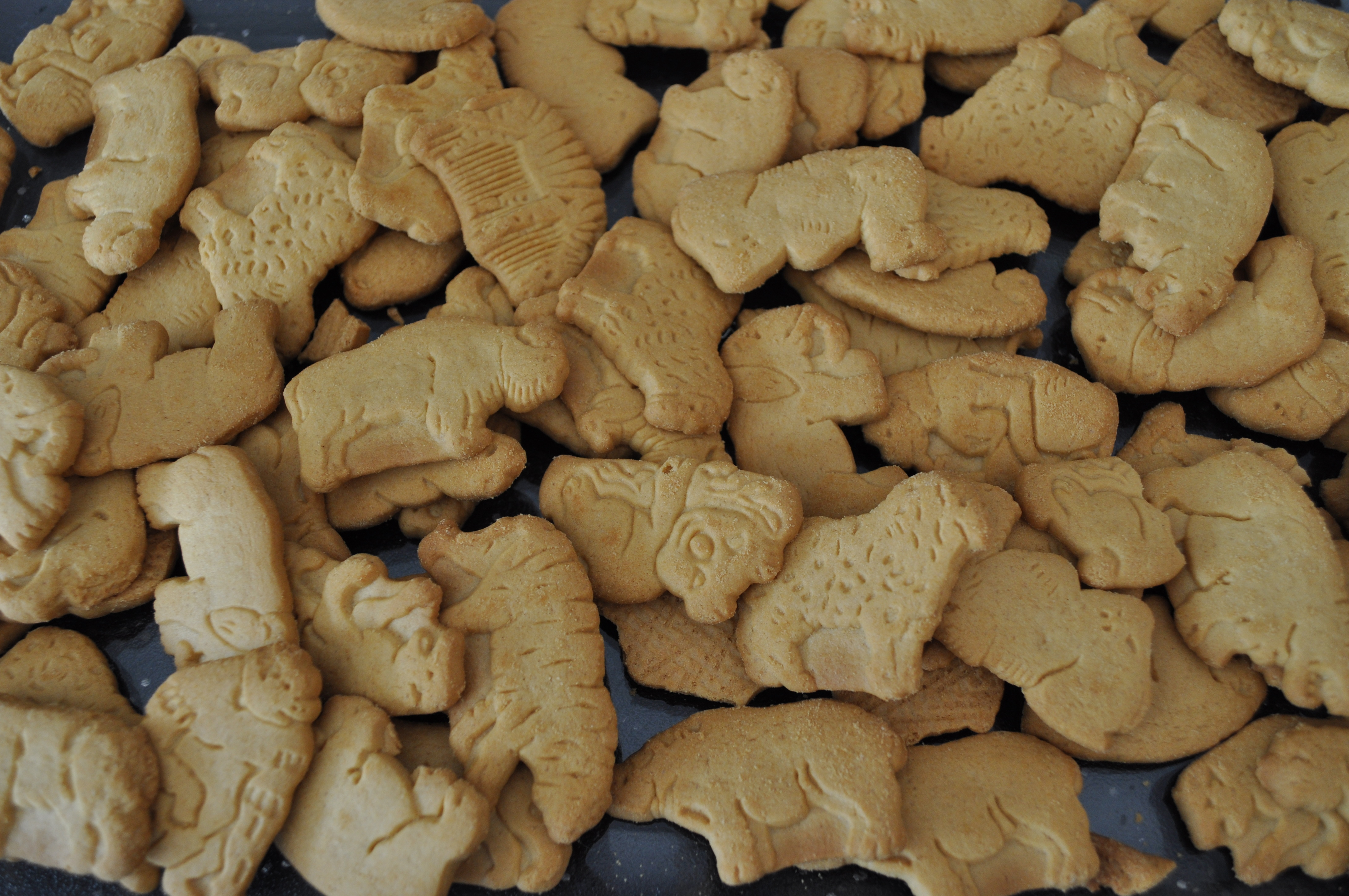 animal-cracker-crust