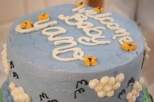 Top Tier of Farm Animal Baby Shower Cake